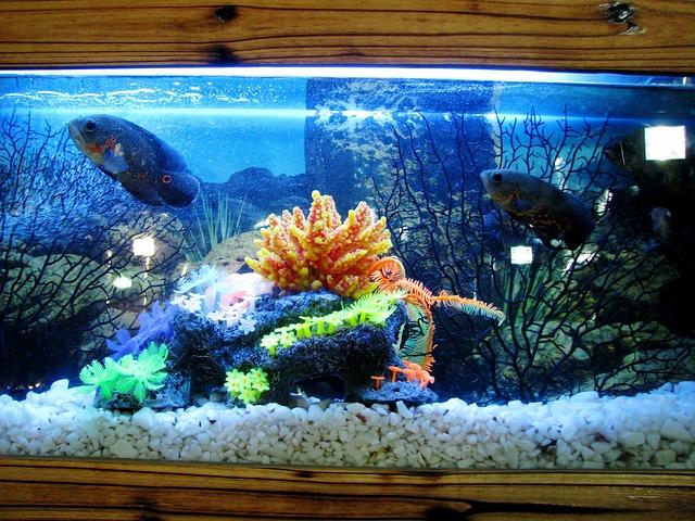 Juwel Rio 240 LED akvárium cserélhető fénycsővel